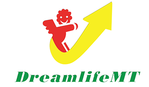 Dream Life MT -Thiết bị sân chơi trẻ em